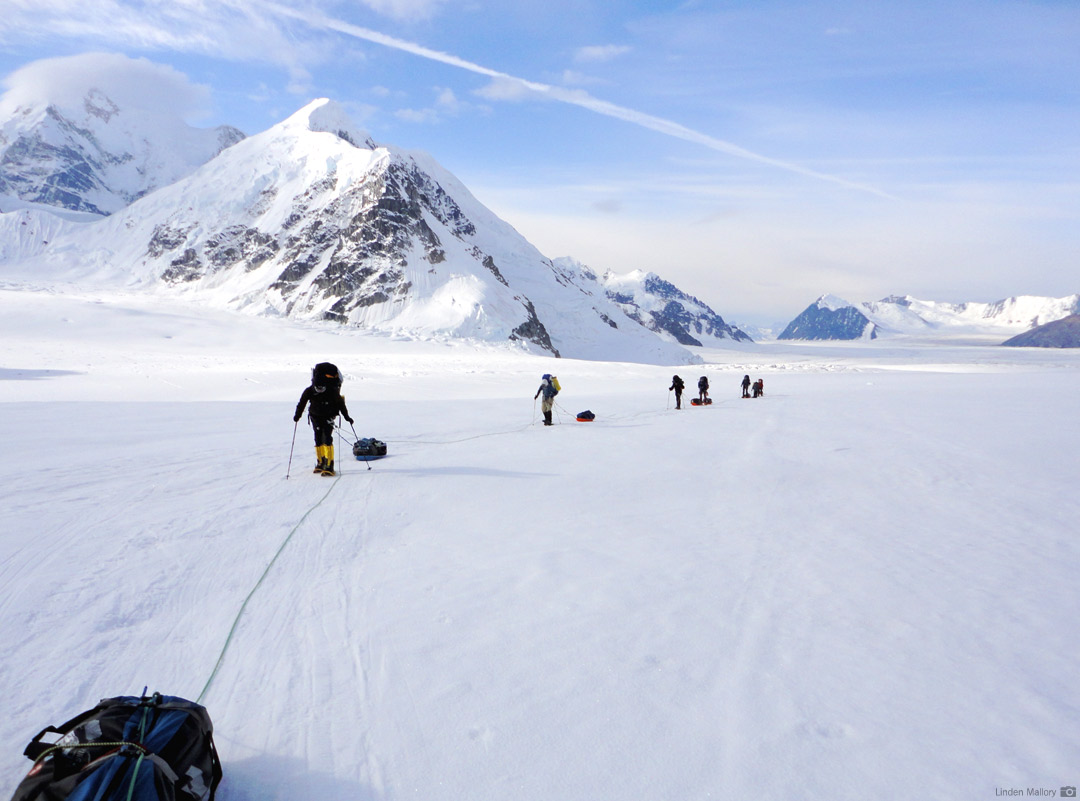 An RMI Team nearing Camp 1 on the Lower Kahiltna Glacier